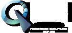 logo-pqfms